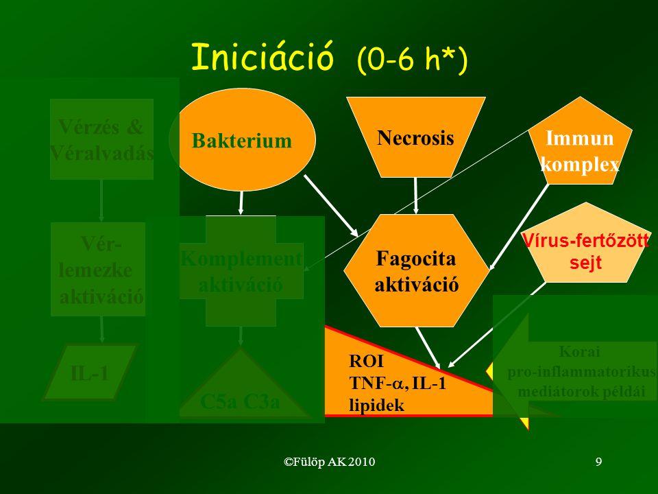 ©Fülöp AK 20109 Iniciáció (0-6 h*) Immun komplex Vérzés & Véralvadás Vér- lemezke aktiváció IL-1 Bakterium Komplement aktiváció C5a C3a Necrosis Fagocita aktiváció ROI TNF- , IL-1 lipidek Vírus-fertőzött sejt Korai pro-inflammatorikus mediátorok példái