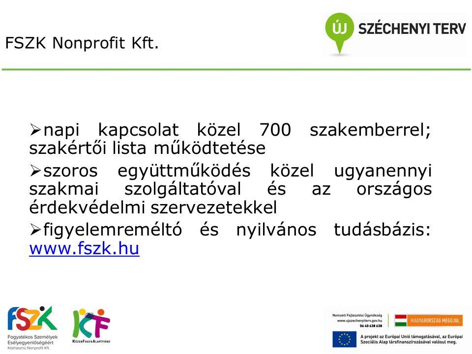Fogyatékosságügyi szerepvállalás K+F+I szervezet Számos hiánypótló helyzetfeltárás és kutatás menedzselése partnerszervezetekkel közösen (2009-2010)  Siket gyermekek kétnyelvű oktatásának lehetőségei és korlátai  Hallássérült fiatalok pályaorientációja és munkaerő-piaci integrációja - Diákok, szülők és szolgáltató intézmények körében végzett kutatási tapasztalatok tükrében  A korai intervenciós intézményrendszer hazai működése  Súlyos halmozottan sérült személyeket nevelő szülők munkaerő-piaci helyzetének a feltárása 500 család részvételével, valamint az intézményi környezet megismerése szülősegítő szervezetek bevonásával