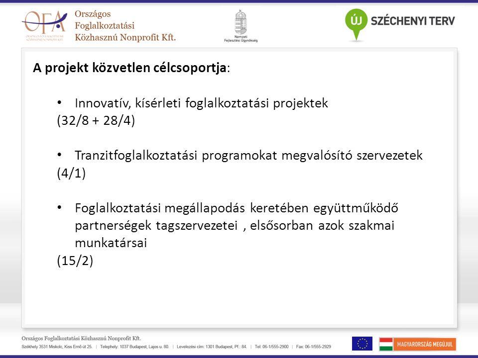 A projekt közvetlen célcsoportja: • Innovatív, kísérleti foglalkoztatási projektek (32/8 + 28/4) • Tranzitfoglalkoztatási programokat megvalósító szervezetek (4/1) • Foglalkoztatási megállapodás keretében együttműködő partnerségek tagszervezetei, elsősorban azok szakmai munkatársai (15/2)