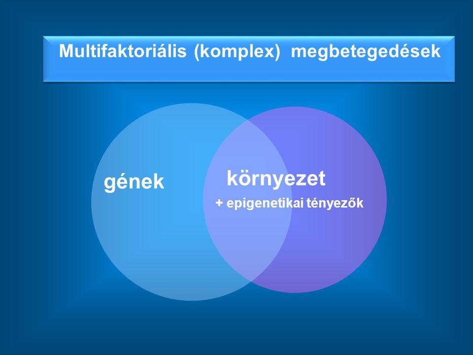 Multifaktoriális (komplex) megbetegedések gének környezet + epigenetikai tényezők