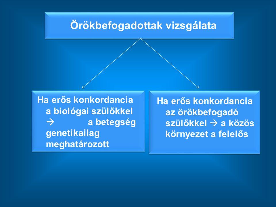 Örökbefogadottak vizsgálata Ha erős konkordancia az örökbefogadó szülőkkel  a közös környezet a felelős Ha erős konkordancia a biológai szülőkkel  a