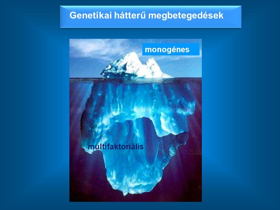 achondroplasia Marfan syndroma polydactylia Fragilis X syTay-Sachs schizophrenia elhízás tumor rheumatoid arthritis depresszió asthma Monogénes (mendeli öröklődésű) megbetegedések Multifaktoriális (komplex) megbetegedések ~ 1:10-1:200 ~ 1:800-1:12 000 << Genetikai hátterű megbetegedések