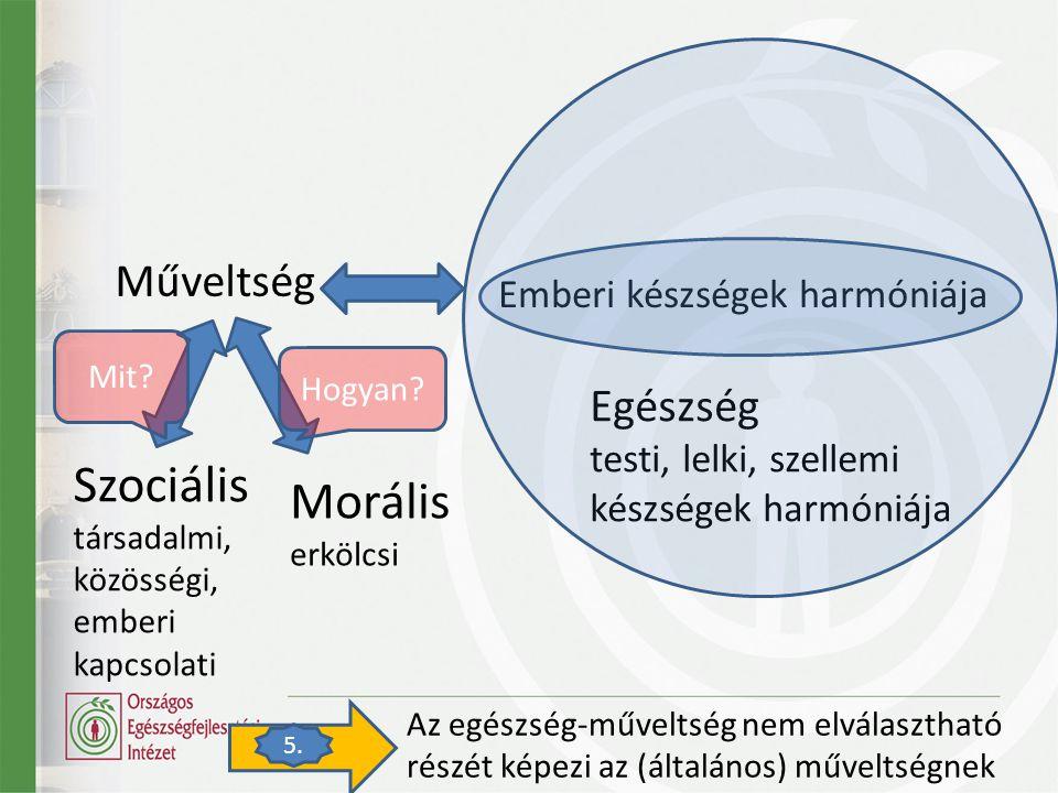 Műveltség Szociális társadalmi, közösségi, emberi kapcsolati Morális erkölcsi Emberi készségek harmóniája Egészség testi, lelki, szellemi készségek harmóniája Az egészség-műveltség nem elválasztható részét képezi az (általános) műveltségnek 5.