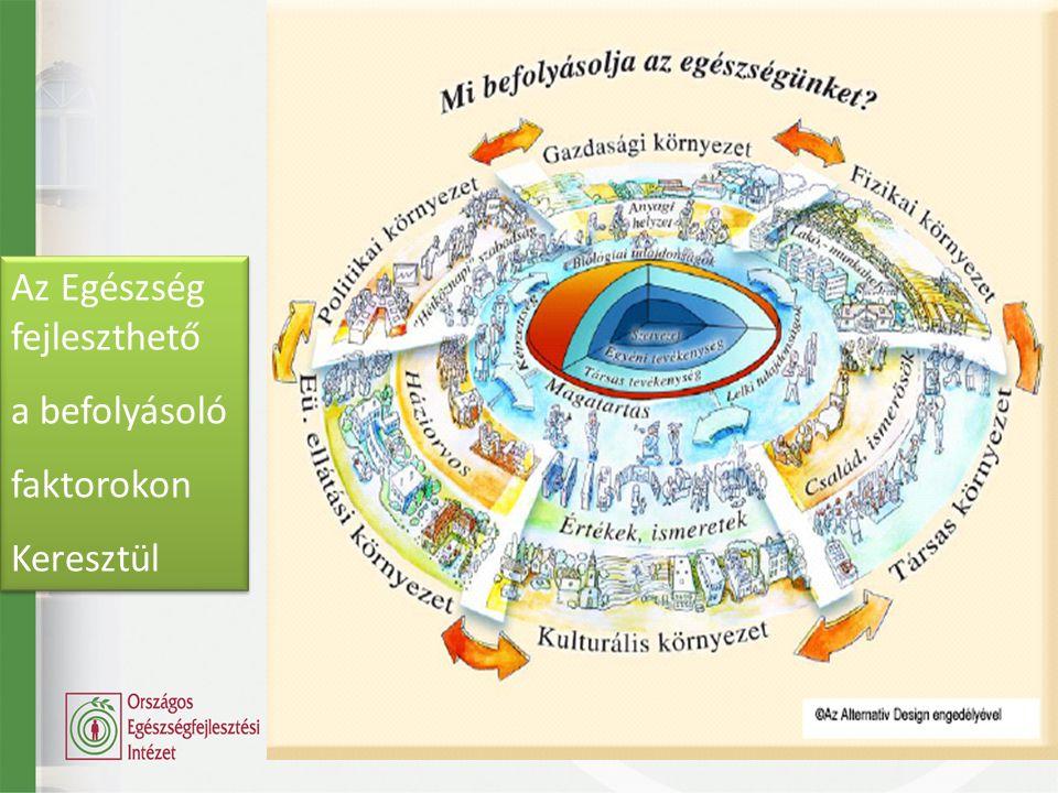 (Egészség) magatartás Egyén Társadalmi elvárás Befolyásoló környezet