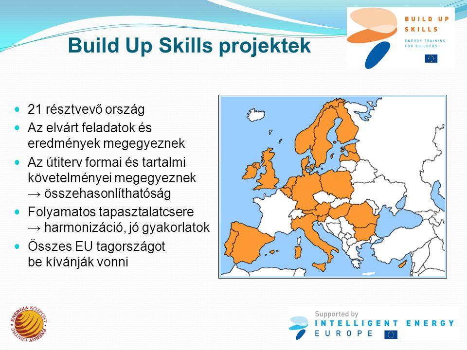  21 résztvevő ország  Az elvárt feladatok és eredmények megegyeznek  Az útiterv formai és tartalmi követelményei megegyeznek → összehasonlíthatóság  Folyamatos tapasztalatcsere → harmonizáció, jó gyakorlatok  Összes EU tagországot be kívánják vonni Build Up Skills projektek