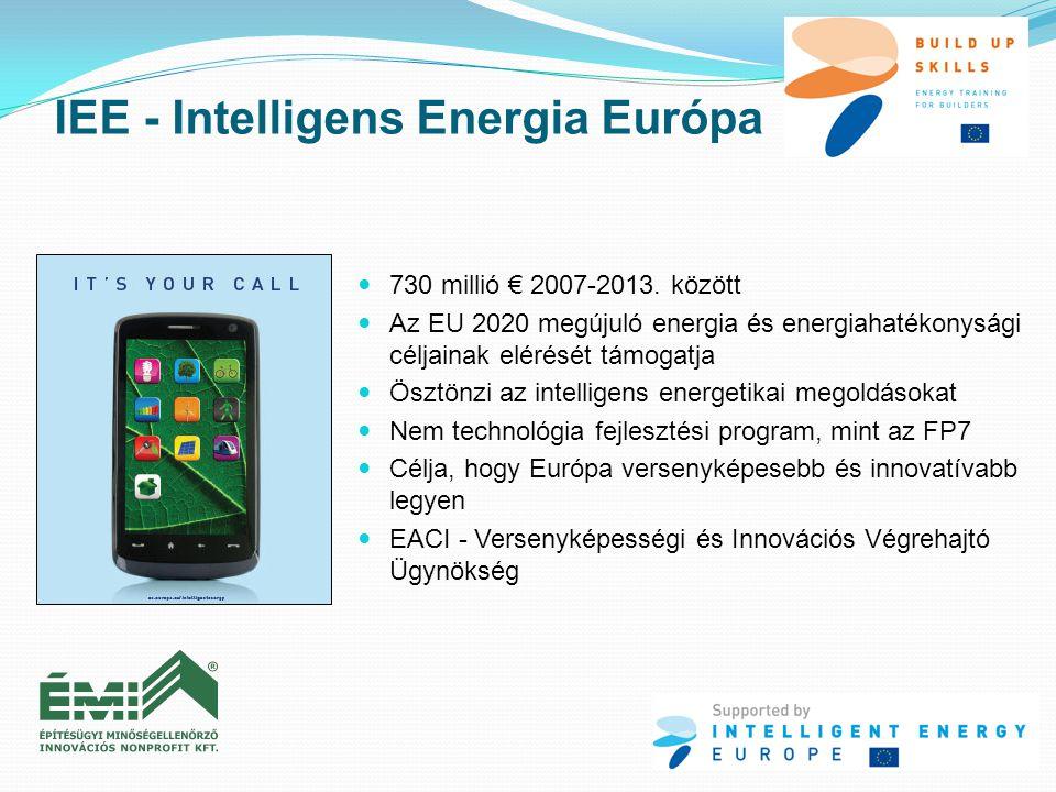 IEE - Intelligens Energia Európa  730 millió € 2007-2013. között  Az EU 2020 megújuló energia és energiahatékonysági céljainak elérését támogatja 