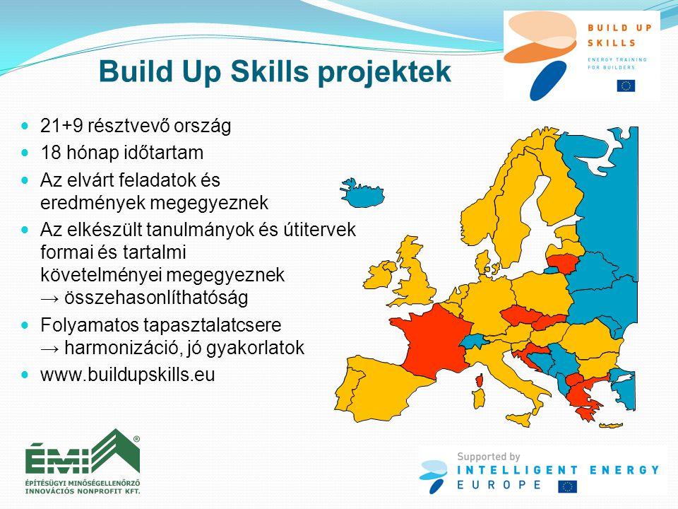  21+9 résztvevő ország  18 hónap időtartam  Az elvárt feladatok és eredmények megegyeznek  Az elkészült tanulmányok és útitervek formai és tartalm