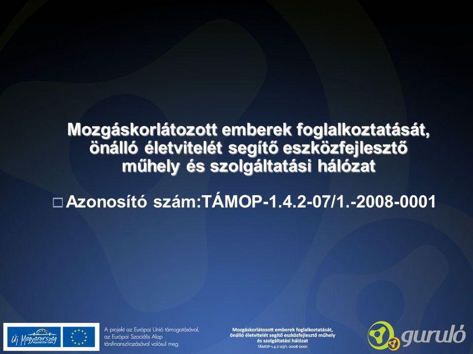 Mozgáskorlátozott emberek foglalkoztatását, önálló életvitelét segítő eszközfejlesztő műhely és szolgáltatási hálózat  Azonosító szám:TÁMOP-1.4.2-07/1.-2008-0001