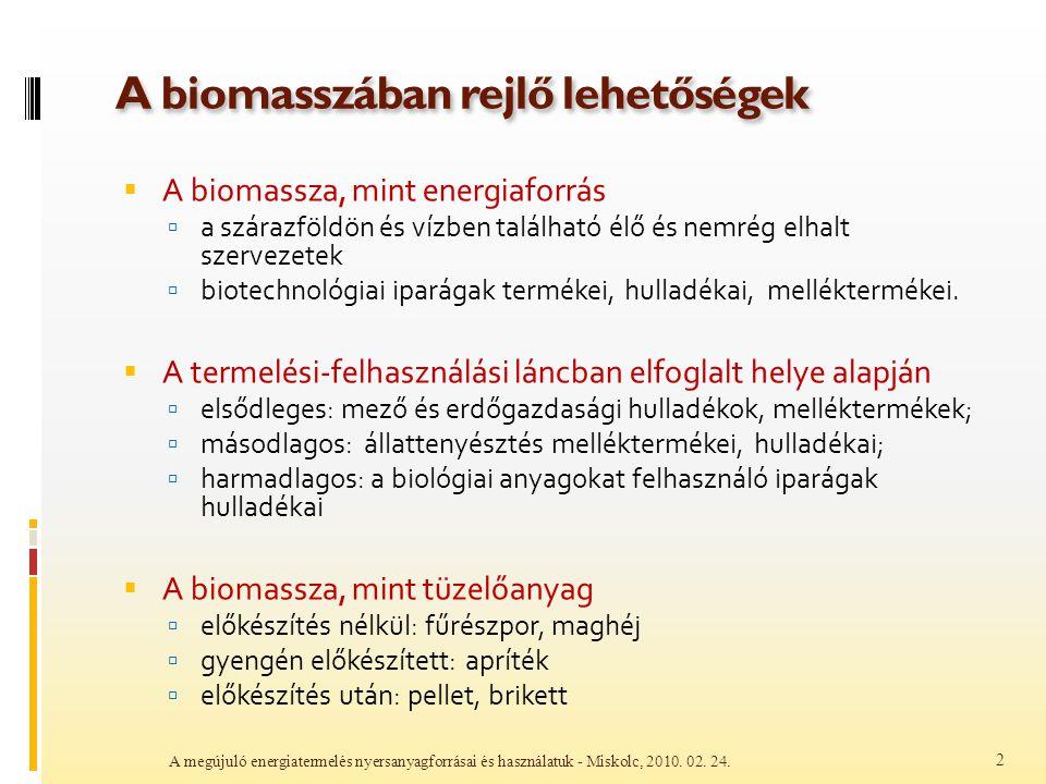 A biomasszában rejlő lehetőségek  A biomassza, mint energiaforrás  a szárazföldön és vízben található élő és nemrég elhalt szervezetek  biotechnoló
