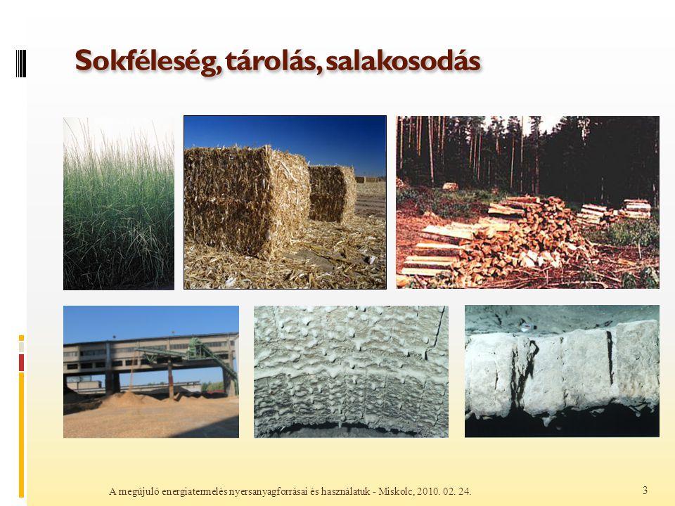 Sokféleség, tárolás, salakosodás A megújuló energiatermelés nyersanyagforrásai és használatuk - Miskolc, 2010. 02. 24. 3