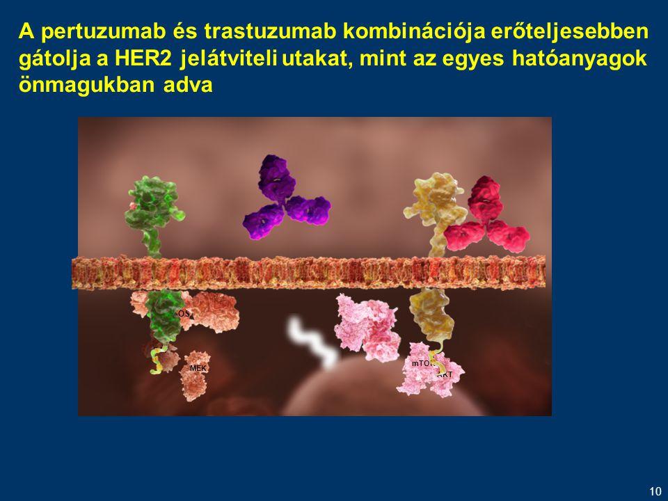 10 MEK RAF SOS AKT mTOR A pertuzumab és trastuzumab kombinációja erőteljesebben gátolja a HER2 jelátviteli utakat, mint az egyes hatóanyagok önmagukba