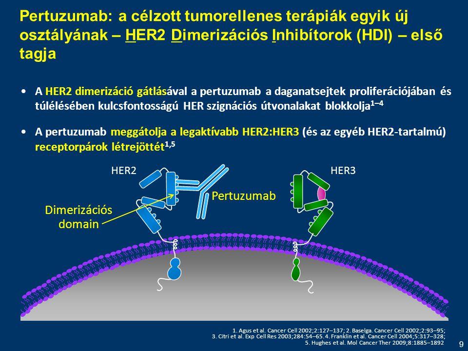 9 Pertuzumab: a célzott tumorellenes terápiák egyik új osztályának – HER2 Dimerizációs Inhibítorok (HDI) – első tagja •A HER2 dimerizáció gátlásával a