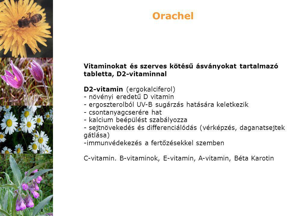Vitaminokat és szerves kötésű ásványokat tartalmazó tabletta, D2-vitaminnal D2-vitamin (ergokalciferol) - növényi eredetű D vitamin - ergoszterolból U