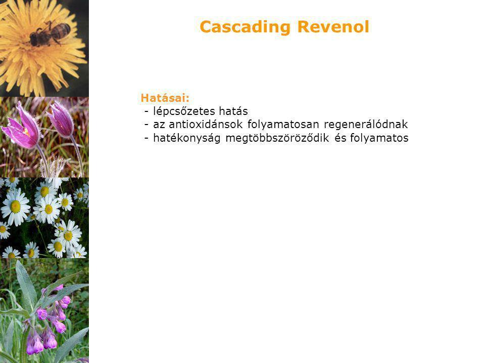 Hatásai: - lépcsőzetes hatás - az antioxidánsok folyamatosan regenerálódnak - hatékonyság megtöbbszöröződik és folyamatos Cascading Revenol