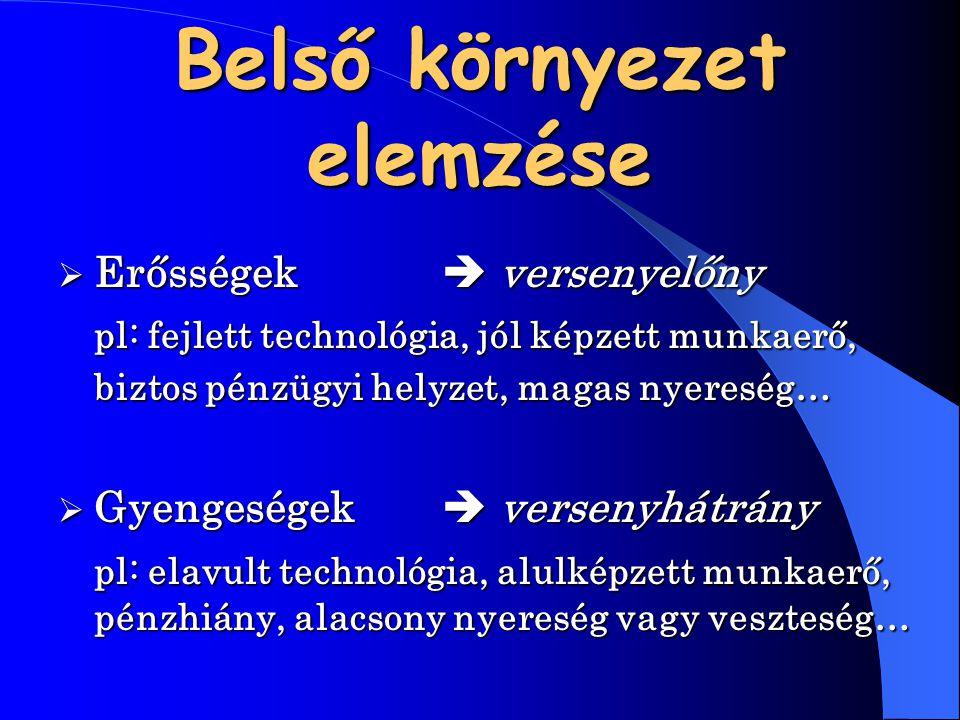 Belső környezet elemzése  Erősségek versenyelőny pl: fejlett technológia, jól képzett munkaerő, biztos pénzügyi helyzet, magas nyereség…  Gyengeség