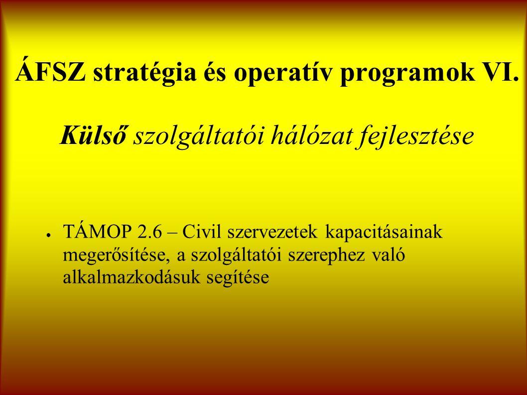 ÁFSZ stratégia és operatív programok VI.