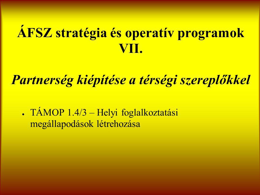 ÁFSZ stratégia és operatív programok VII.
