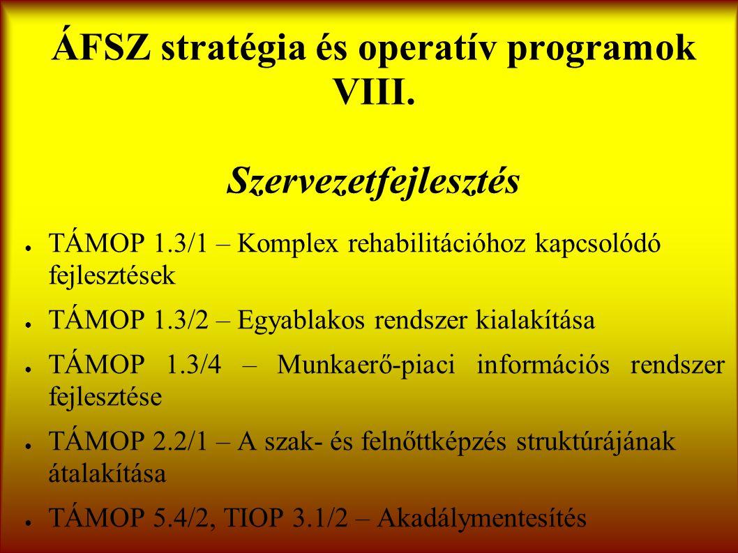 ÁFSZ stratégia és operatív programok VIII.