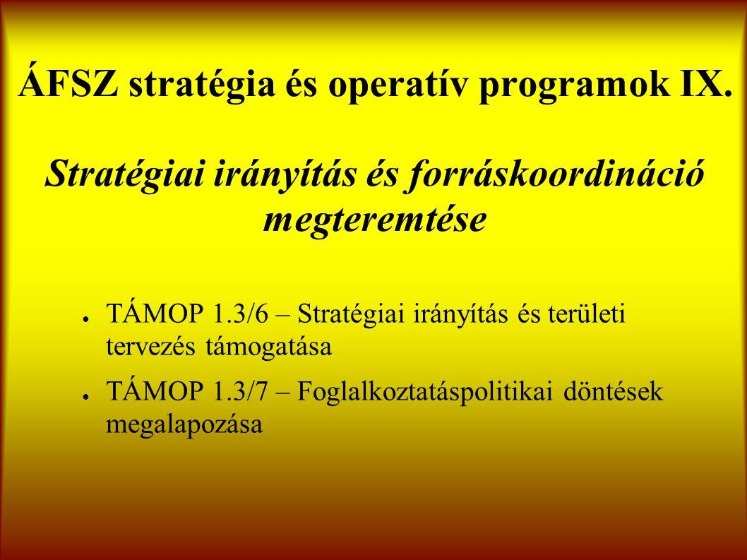 ÁFSZ stratégia és operatív programok IX.