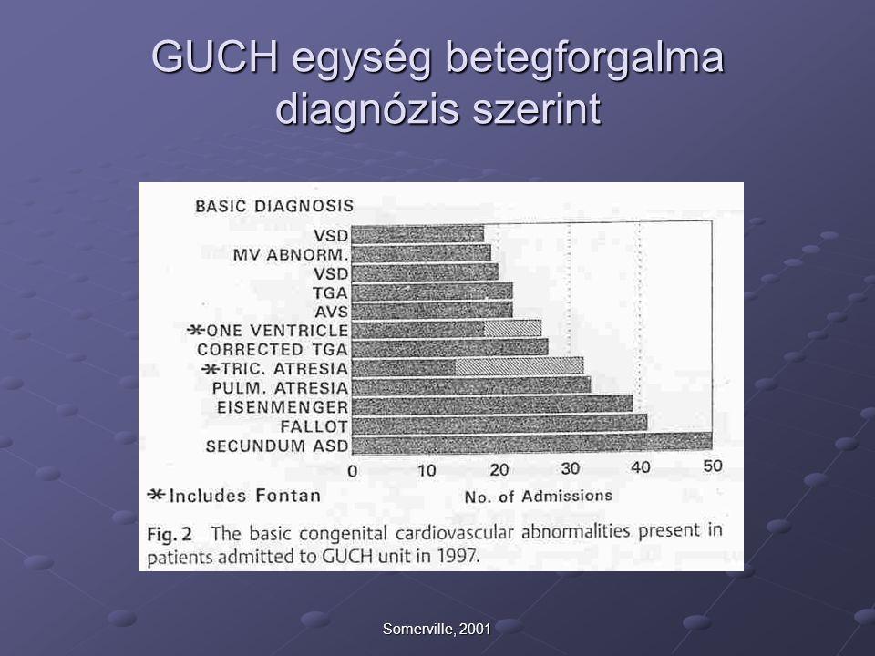 Somerville, 2001 GUCH egység betegforgalma diagnózis szerint