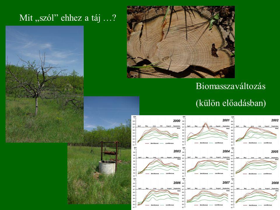 """Mit """"szól"""" ehhez a táj …? Biomasszaváltozás (külön előadásban)"""