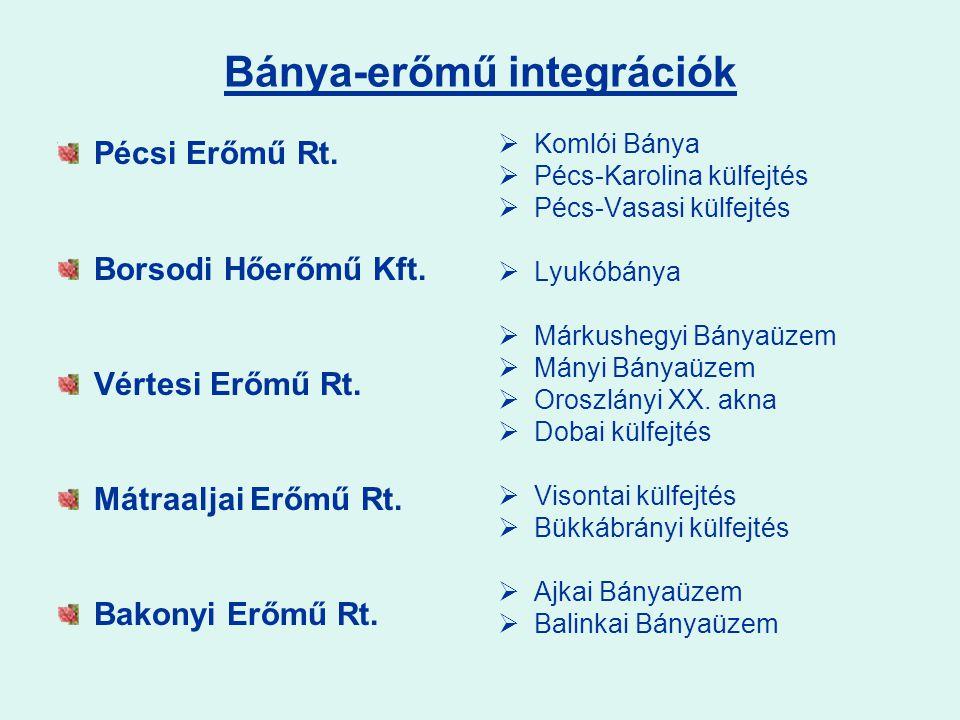 Bánya-erőmű integrációk Pécsi Erőmű Rt.Borsodi Hőerőmű Kft.
