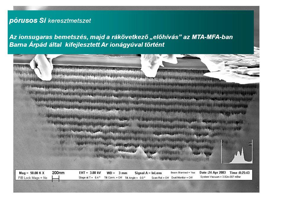 """pórusos Si keresztmetszet Az ionsugaras bemetszés, majd a rákövetkező """"előhívás az MTA-MFA-ban Barna Árpád által kifejlesztett Ar ionágyúval történt"""