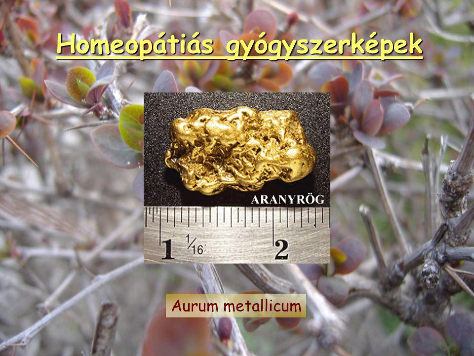 Homeopátiás gyógyszerképek Aconitum napellus