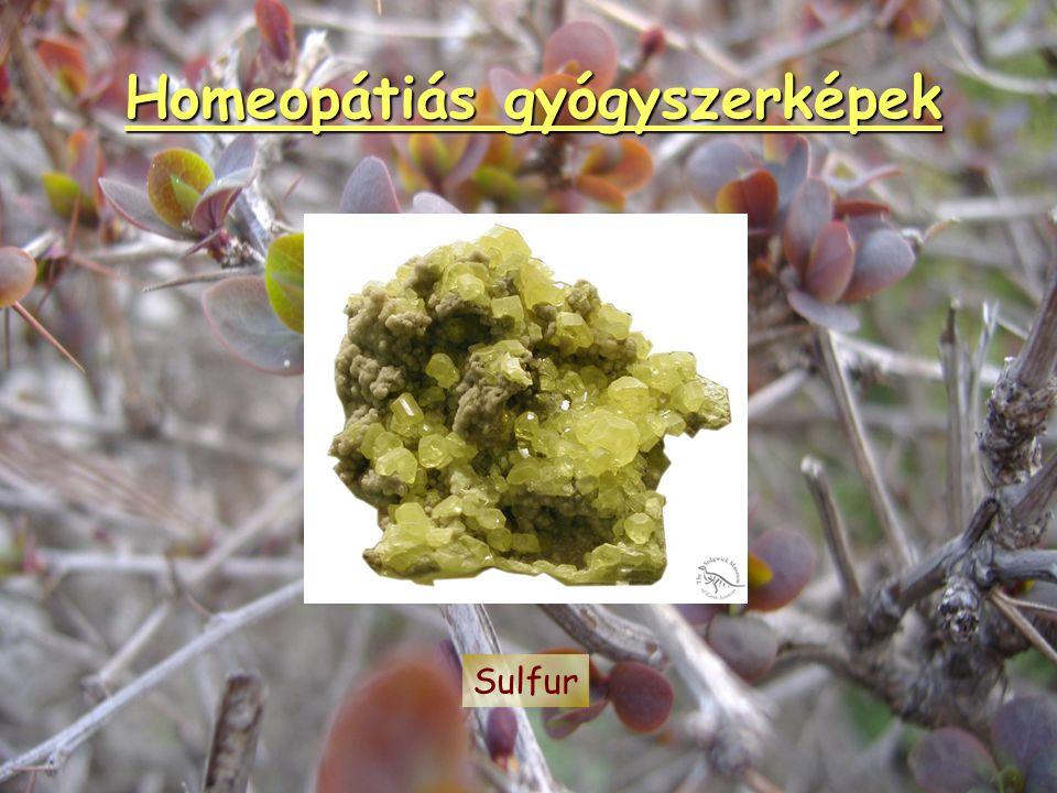Homeopátiás gyógyszerképek Natrium muriaticum