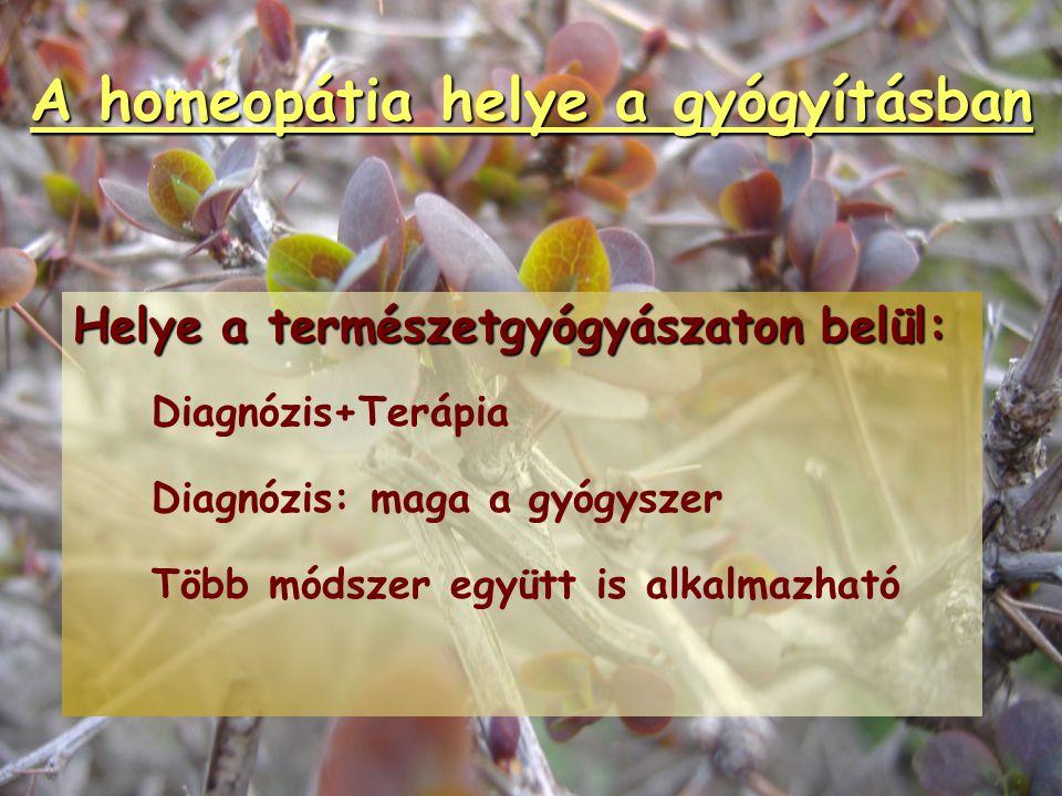 A homeopátia helye a gyógyításban Helye a gyógyszerészeti tudományokon belül: Sajátos eljárás: potenciálás (új qualitás) Homeopátia  Fitoterápia (Fő
