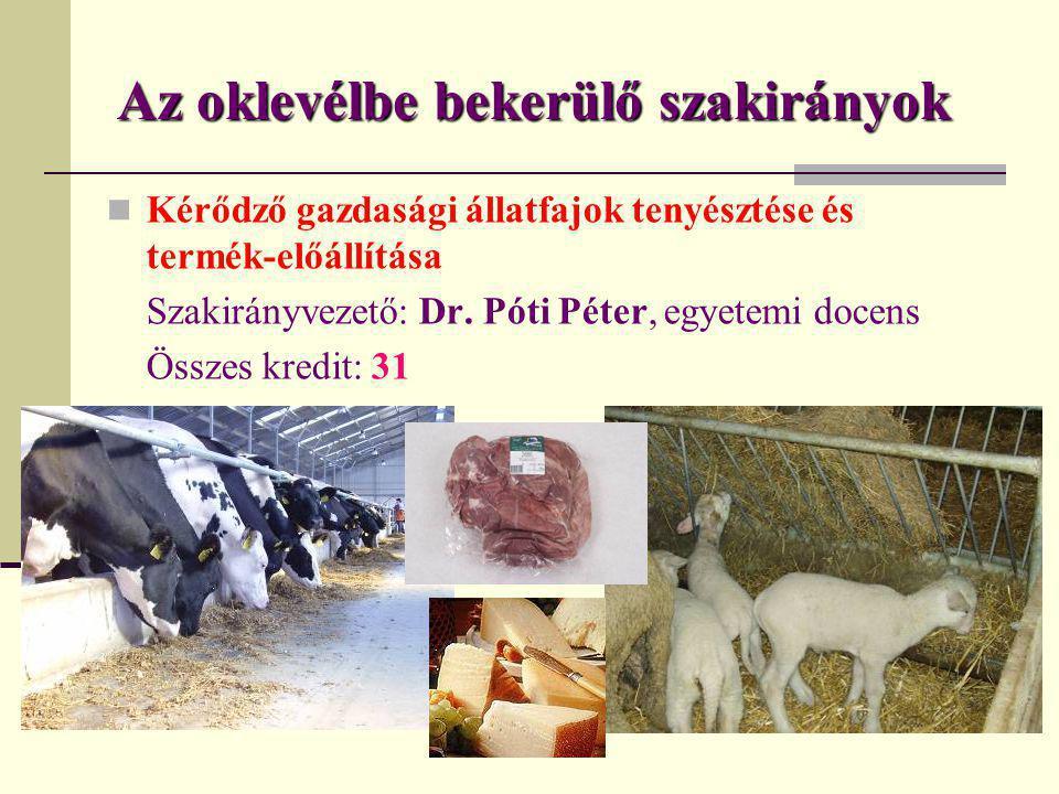 Az oklevélbe bekerülő szakirányok  Kérődző gazdasági állatfajok tenyésztése és termék-előállítása Szakirányvezető: Dr. Póti Péter, egyetemi docens Ös