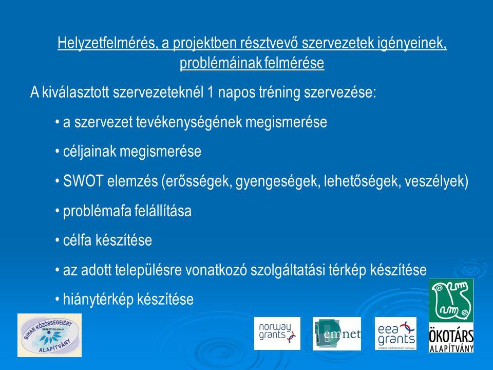 Helyzetfelmérés, a projektben résztvevő szervezetek igényeinek, problémáinak felmérése A kiválasztott szervezeteknél 1 napos tréning szervezése: • a szervezet tevékenységének megismerése • céljainak megismerése • SWOT elemzés (erősségek, gyengeségek, lehetőségek, veszélyek) • problémafa felállítása • célfa készítése • az adott településre vonatkozó szolgáltatási térkép készítése • hiánytérkép készítése