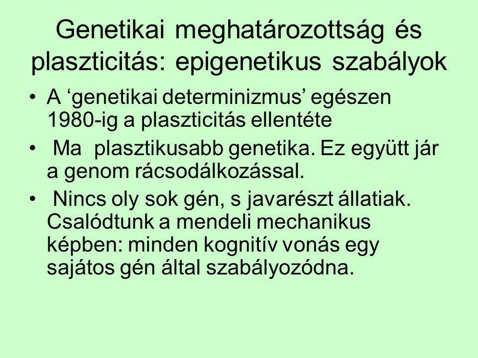 Genetikai meghatározottság és plaszticitás: epigenetikus szabályok •A 'genetikai determinizmus' egészen 1980-ig a plaszticitás ellentéte • Ma plasztik