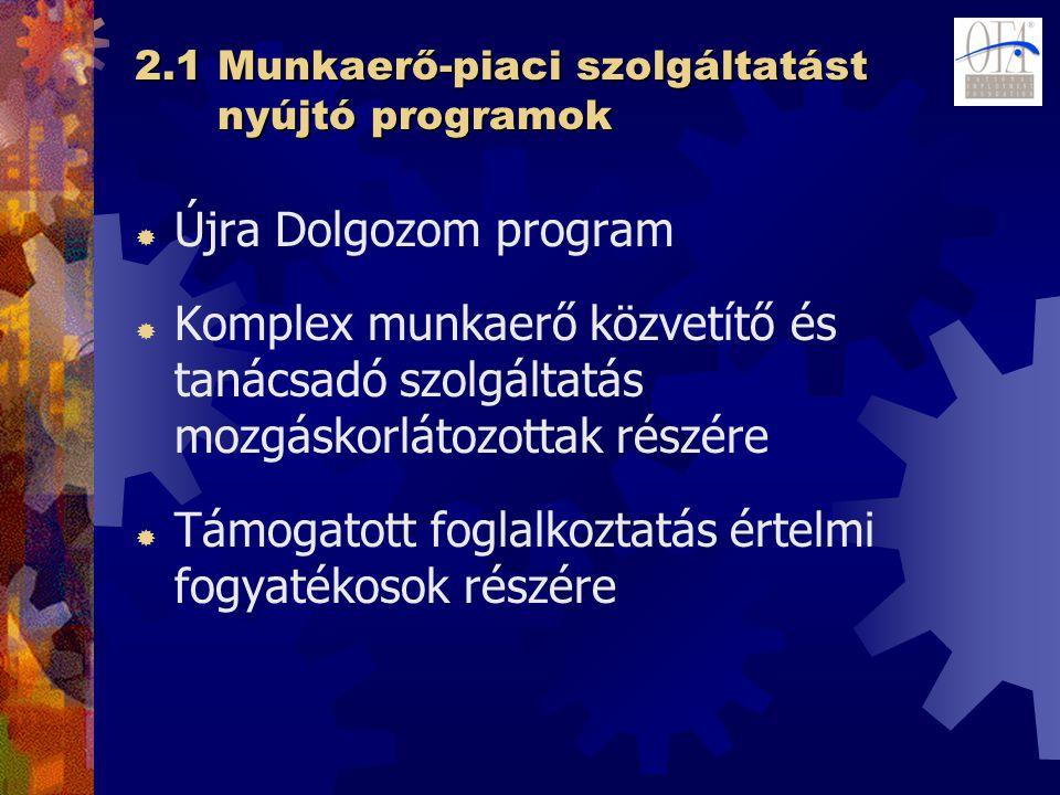 2.1 Munkaerő-piaci szolgáltatást nyújtó programok  Újra Dolgozom program  Komplex munkaerő közvetítő és tanácsadó szolgáltatás mozgáskorlátozottak részére  Támogatott foglalkoztatás értelmi fogyatékosok részére