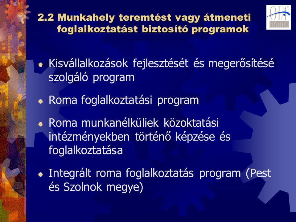 2.2 Munkahely teremtést vagy átmeneti foglalkoztatást biztosító programok  Kisvállalkozások fejlesztését és megerősítésé szolgáló program  Roma foglalkoztatási program  Roma munkanélküliek közoktatási intézményekben történő képzése és foglalkoztatása  Integrált roma foglalkoztatás program (Pest és Szolnok megye)