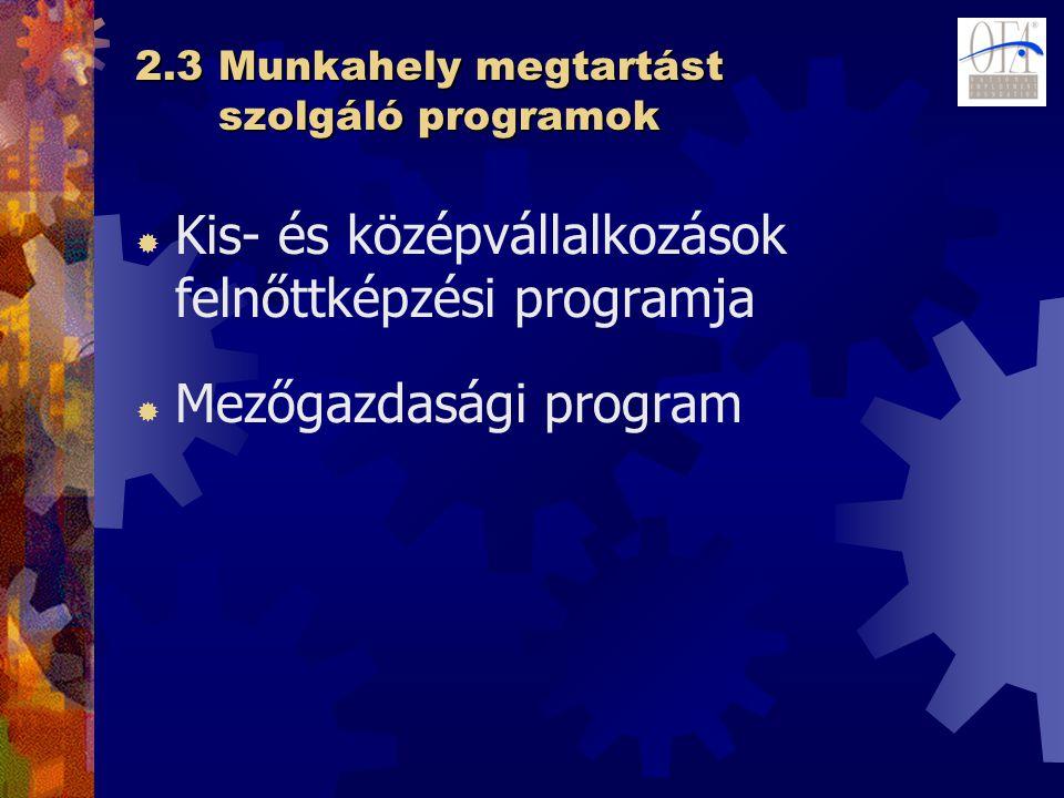 2.3 Munkahely megtartást szolgáló programok  Kis- és középvállalkozások felnőttképzési programja  Mezőgazdasági program