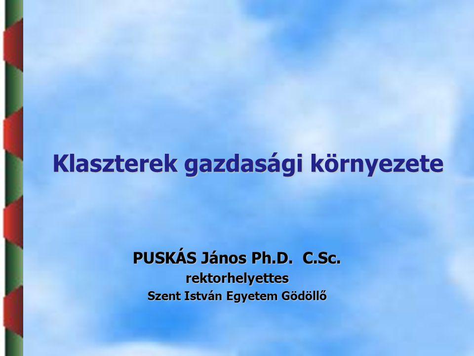 Klaszterek gazdasági környezete PUSKÁS János Ph.D.