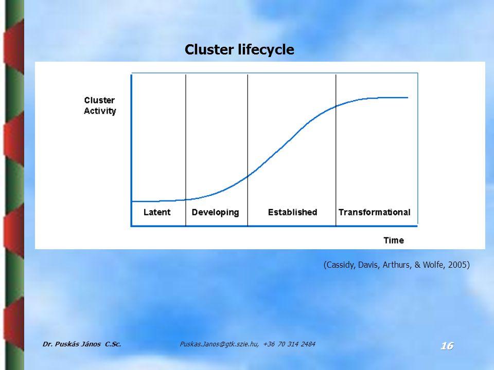 Dr. Puskás János C.Sc.Puskas.Janos@gtk.szie.hu, +36 70 314 2484 16 Cluster lifecycle (Cassidy, Davis, Arthurs, & Wolfe, 2005)