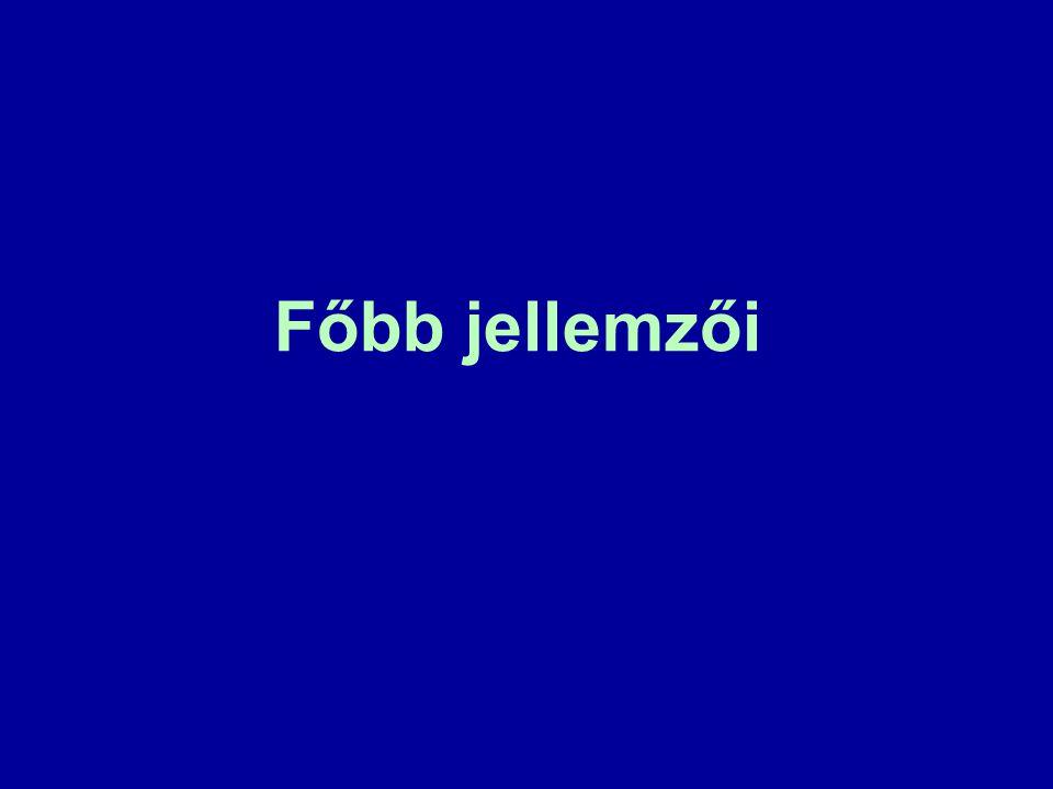 3. A Termini magyar–magyar szótár és adatbázis