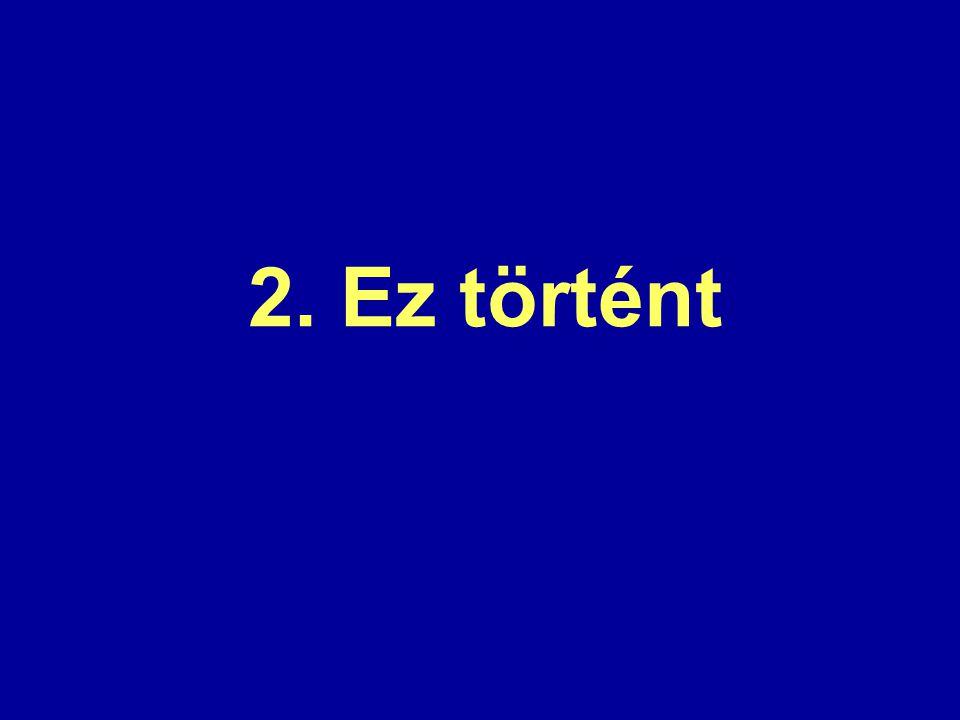 Ht-szótár – Termini magyar–magyar szótár és adatbázis (magyar–magyar–magyar–magyar– magyar–magyar–magyar–magyar szótár  )