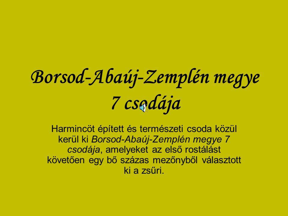 Borsod-Abaúj-Zemplén megye 7 csodája Harmincöt épített és természeti csoda közül kerül ki Borsod-Abaúj-Zemplén megye 7 csodája, amelyeket az első rostálást követően egy bő százas mezőnyből választott ki a zsűri.