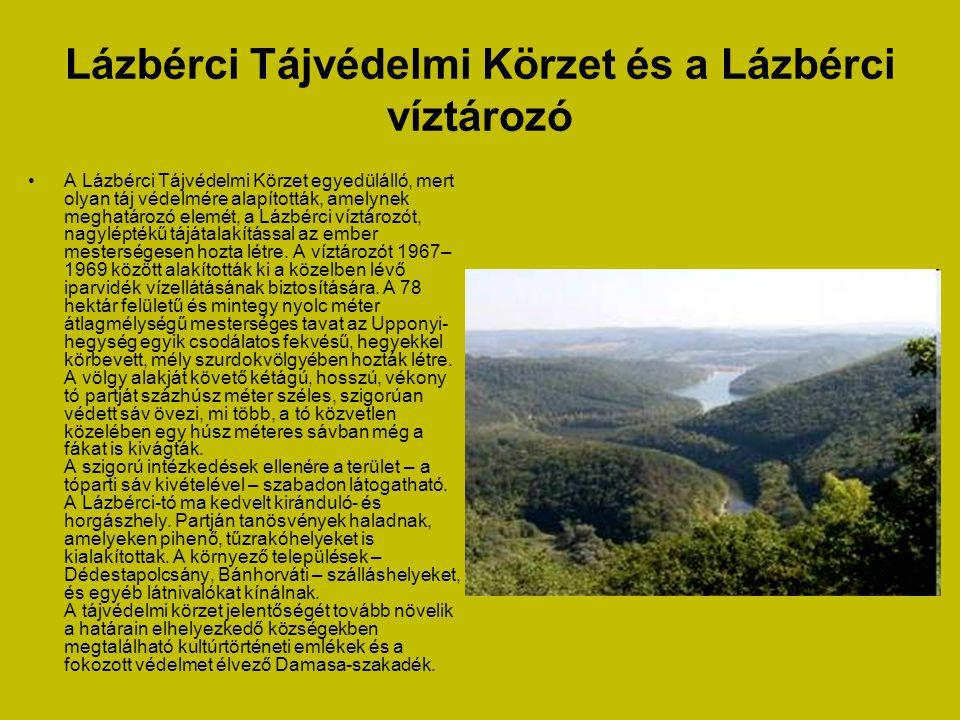 A keleméri Mohos-tavak •Kismohos, Nagymohos egyedülálló természeti látnivalók Magyarországon. Eredetük a jégkorszakra vezethető vissza. Az akkor kiala