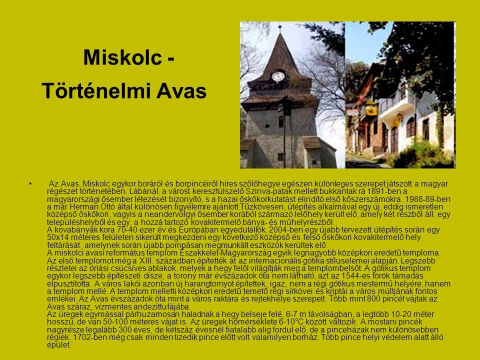Miskolc - Kárpát- medencei Népviseleti Gyűjtemény • A Lézerpont Látványtár Miskolc kulturális turizmusának egyedi színfoltja. A kiállítások témakörei