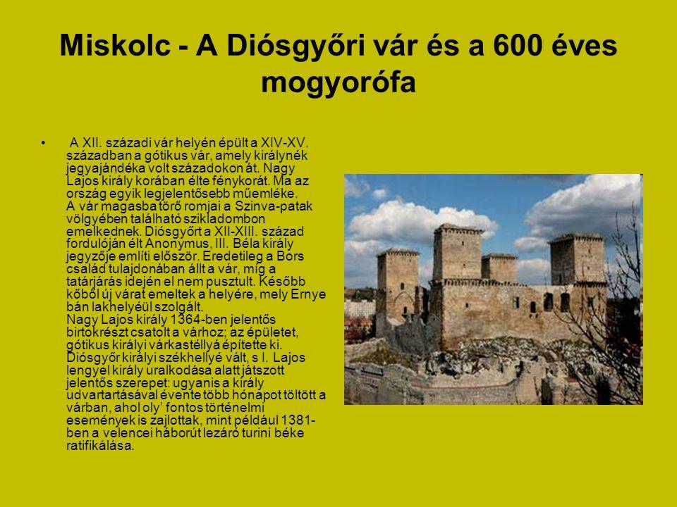 Miskolc - Történelmi Avas • Az Avas, Miskolc egykor boráról és borpincéiről híres szőlőhegye egészen különleges szerepet játszott a magyar régészet tö