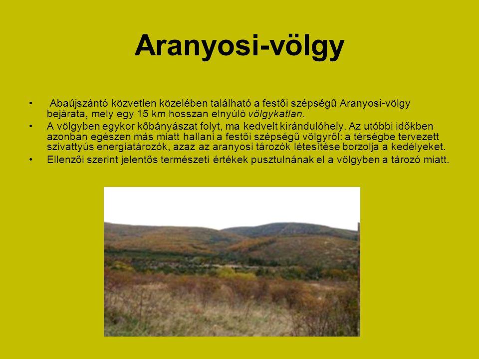 Aranyosi-völgy • Abaújszántó közvetlen közelében található a festői szépségű Aranyosi-völgy bejárata, mely egy 15 km hosszan elnyúló völgykatlan.