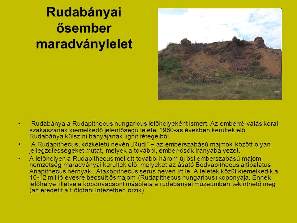 Regéci vár • A vár 624 m magas vulkanikus eredetű sziklaszirten épült. Regéc vára a szabálytalan alaprajzú, belsőtornyos hegyi várak kategóriájába tar