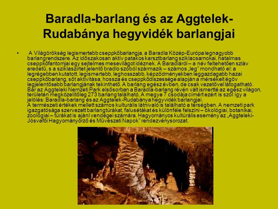 Baradla-barlang és az Aggtelek- Rudabánya hegyvidék barlangjai • A Világörökség legismertebb cseppkőbarlangja, a Baradla Közép-Európa legnagyobb barlangrendszere.