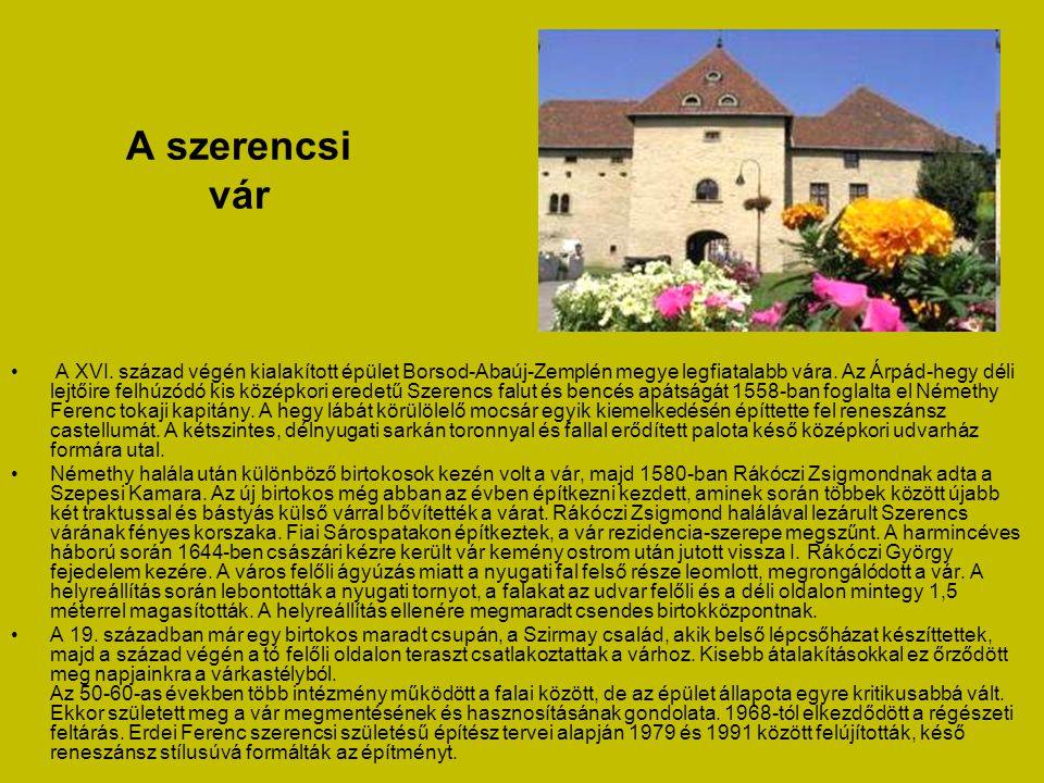 A sátoraljaújhelyi csodarabbi sírja • A régi zsidó temető a zsidóság jelentős zarándokhelye: Teitelbaum Mózes csodarabbi nyughelye. •A sátoraljaújhely