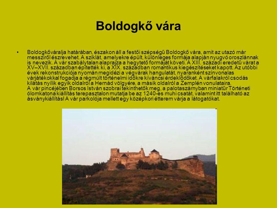 Regéci vár • A vár 624 m magas vulkanikus eredetű sziklaszirten épült.