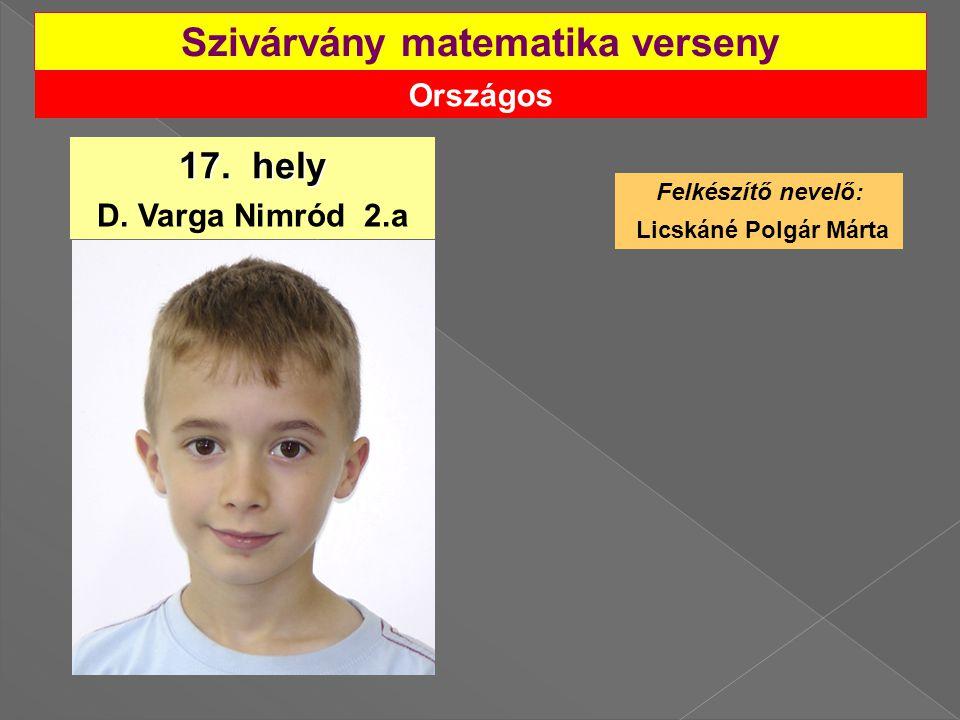 Országos Szivárvány matematika verseny 17.hely D.